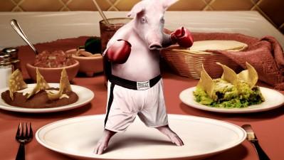 Alka Seltzer - Boxer pig