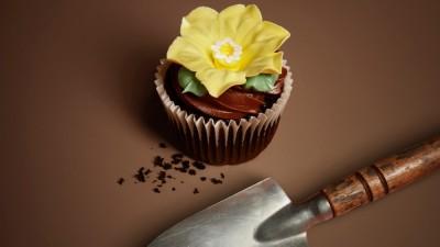 Eini & Co cupcakes - Spade
