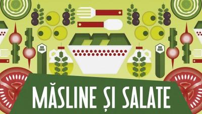 Mega Image Concept Store - Masline si salate