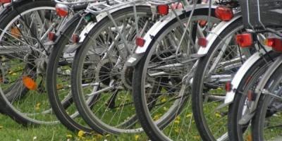 Biciclop, Veloteca si Pegas despre cum s-au miscat afacerile cu biciclete in perioada crizei