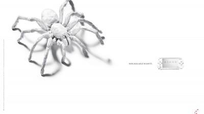 PlayStation Portable - White tarantula