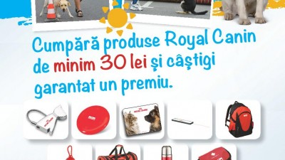 Royal Canin - Summer Pet Festival
