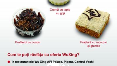Wu Xing - Flyer (verso)