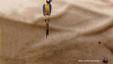 WWF - Don't cut the rainforest
