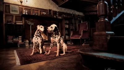 Animal Anti-Cruelty League - Dalmatians