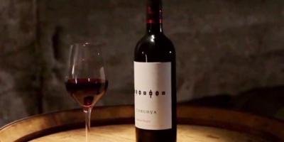 Filmul de prezentare al vinurilor Corcova Roy & Damboviceanu, semnat de Havas Worldwide ADDV