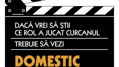 Domestic - Sticker caserola (curcanul)