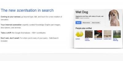 Google are un simt al umorului impecabil