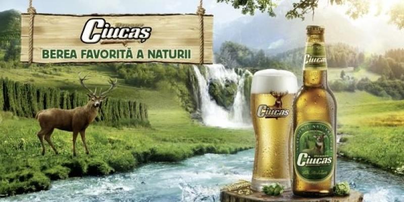 GMP Advertising prezinta ingredientele din berea Ciucas in noua campanie de imagine