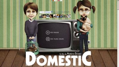 Website: Domesticthemovie.ro (Homepage)
