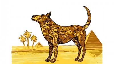 Animal de Companie - Caine (Camel)