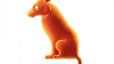 Animal de Companie - Caine (Orange)