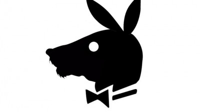Animal de Companie - Caine (Playboy)