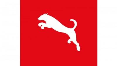 Animal de Companie - Caine (Puma)