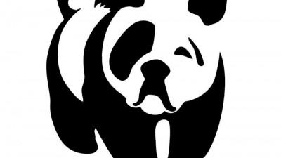 Animal de Companie - Caine (WWF)