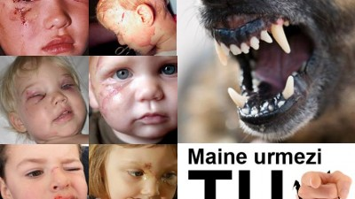 Mame pentru Mame - Maine poti fi tu