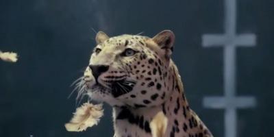 Razboi publicitar intre Mercedes si Jaguar