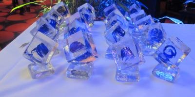 Marii castigatori de la Cristal Festival 2013