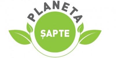 Grup Sapte anunta rezultatele programului intern de CSR