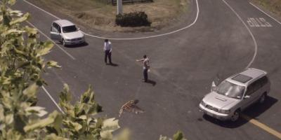 Greseli mortale in trafic