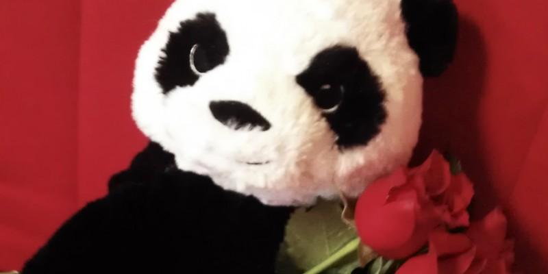 """""""Panda iubeste florile"""", campania promotionala rezultata din parteneriatul dintre foodpanda.ro si FlorideLux.ro"""