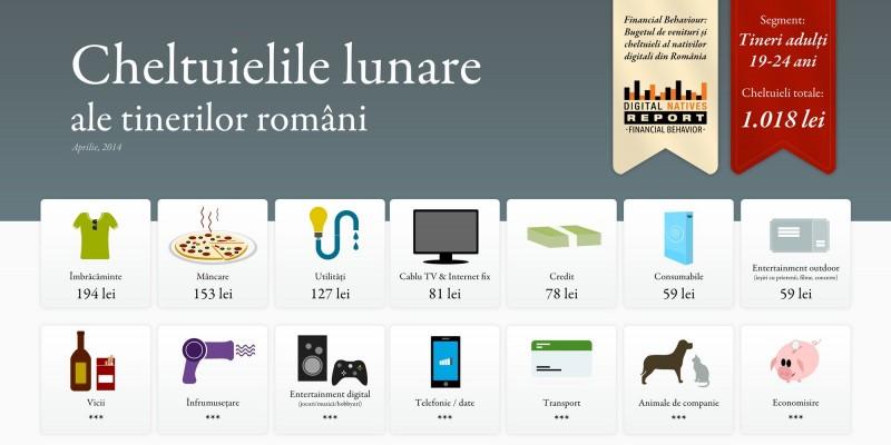 In ce directii se impart bugetele nativilor digitali din Romania