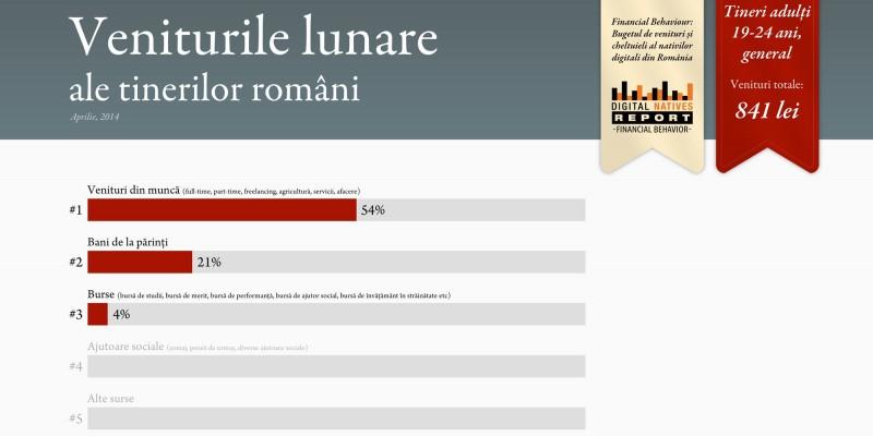 Nativii digitali din Romania si sursele de venit