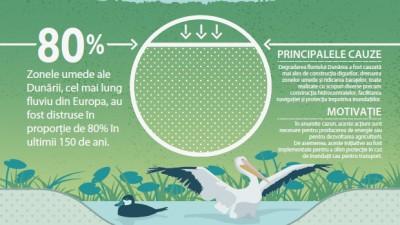 WWF si Coca-Cola lanseaza un proiect pentru conservarea si refacerea unor zone din lungul Dunarii