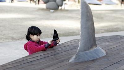 IFAW - Shark Coffins (4)