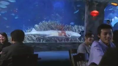 WildAid PSA - Yao Ming: Shark Fin Soup