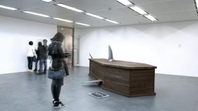 IFAW - Shark Coffins (1)