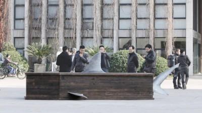 IFAW - Shark Coffins (3)