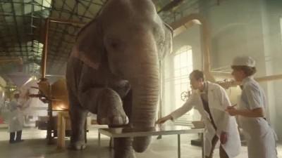 [Ne place / RO] Elefantul din toortitzi