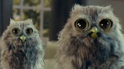 McVitie's - Owl