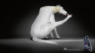 Avia Turbo - White horse