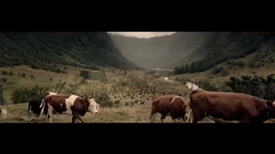 """Courtyard """"Make room for a little fun"""" - Cattle Drive"""