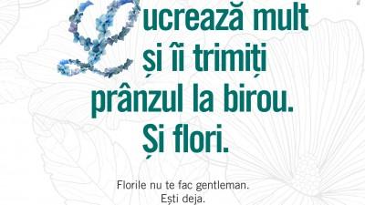 Floria.ro - La birou