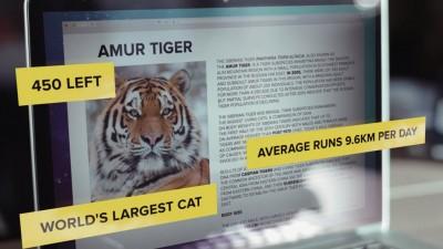 Poti sa alergi mai repede ca un tigru?