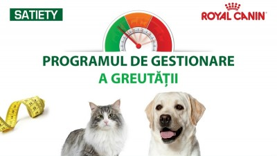 Royal Canin - Newsletter Program de gestionare a greutatii