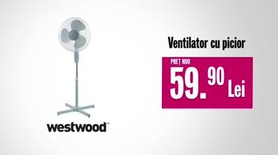 Domo | Westwood - Ventilator din picior