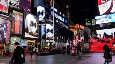 Times Square, invadat de pisici. Dar nu orice pisici