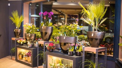 Floria In strada, o florarie concept intr-un proiect semnat Rusu+Bortun Brand Growers