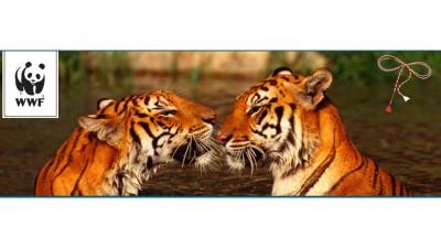 Thinkdigital si WWF Romania imbina dragostea pentru natura cu dragostea pentru cei dragi