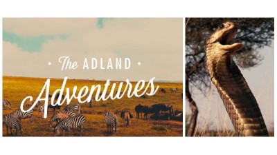 O noua serie Nature: animalele salbatice din publicitate