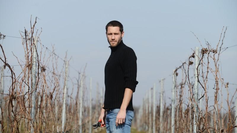 [Produs in Ro] Laurent Pfeffer, Catleya: Insist foarte mult pe aspectul de produs romanesc. Pamant romanesc, muncitori romani in vie, lemn romanesc pentru butoaie