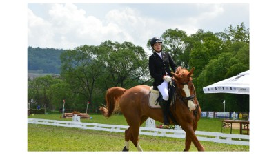 Record de inscrieri la cea de-a sasea editie Transylvania Horse Show: 36 de locuri ocupate in doar 72 de ore la Concursul International Universitar