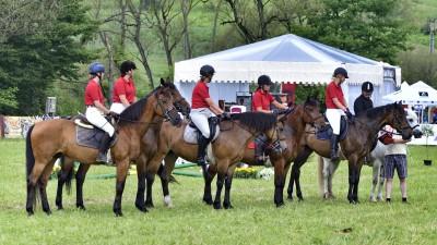 Transylvania Horse Show, cea mai populara competitie ecvestra in randul studentilor din intreaga lume