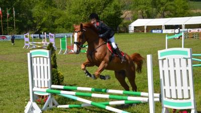 Incepe cea de-a sasea editie a concursului hipic international Transylvania Horse Show