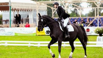 Karpatia Horse Show 2016: performanță, spectacol ecvestru, atracție turistică, cultură și entertainment