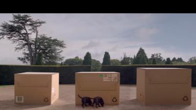 Ce se ascunde în cutie